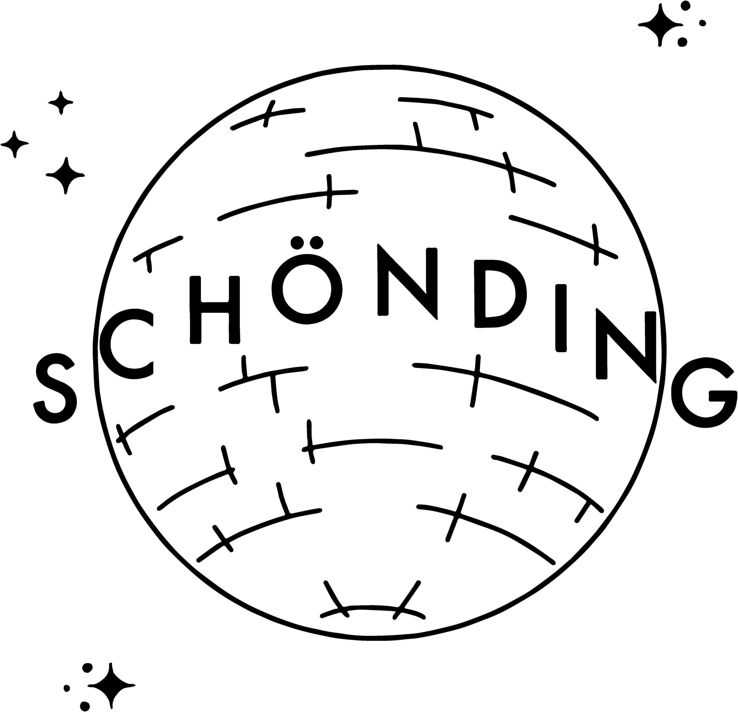 Die Abbildung zeigt das Logo des SchönDing Shops: eine stilisierte Diskokugel und der Schriftzug SCHÖNDING.
