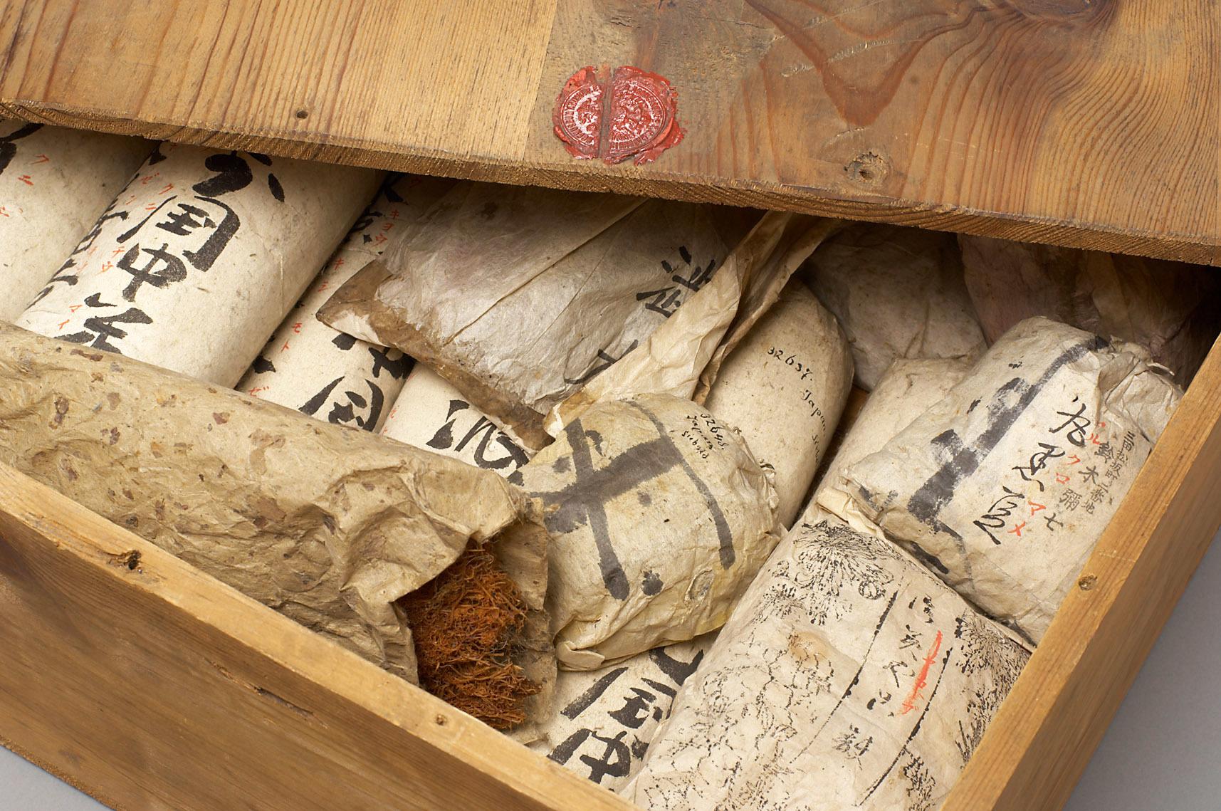 Fotografie einer Holzkiste mit Speiseproben aus den Sammlungen des Weltmuseum Wien. Die Kiste beinhaltet unter anderem in Papier verpackte Sojabohnen, die Verpackungen sind mit japanischen Zeichen beschriftet.