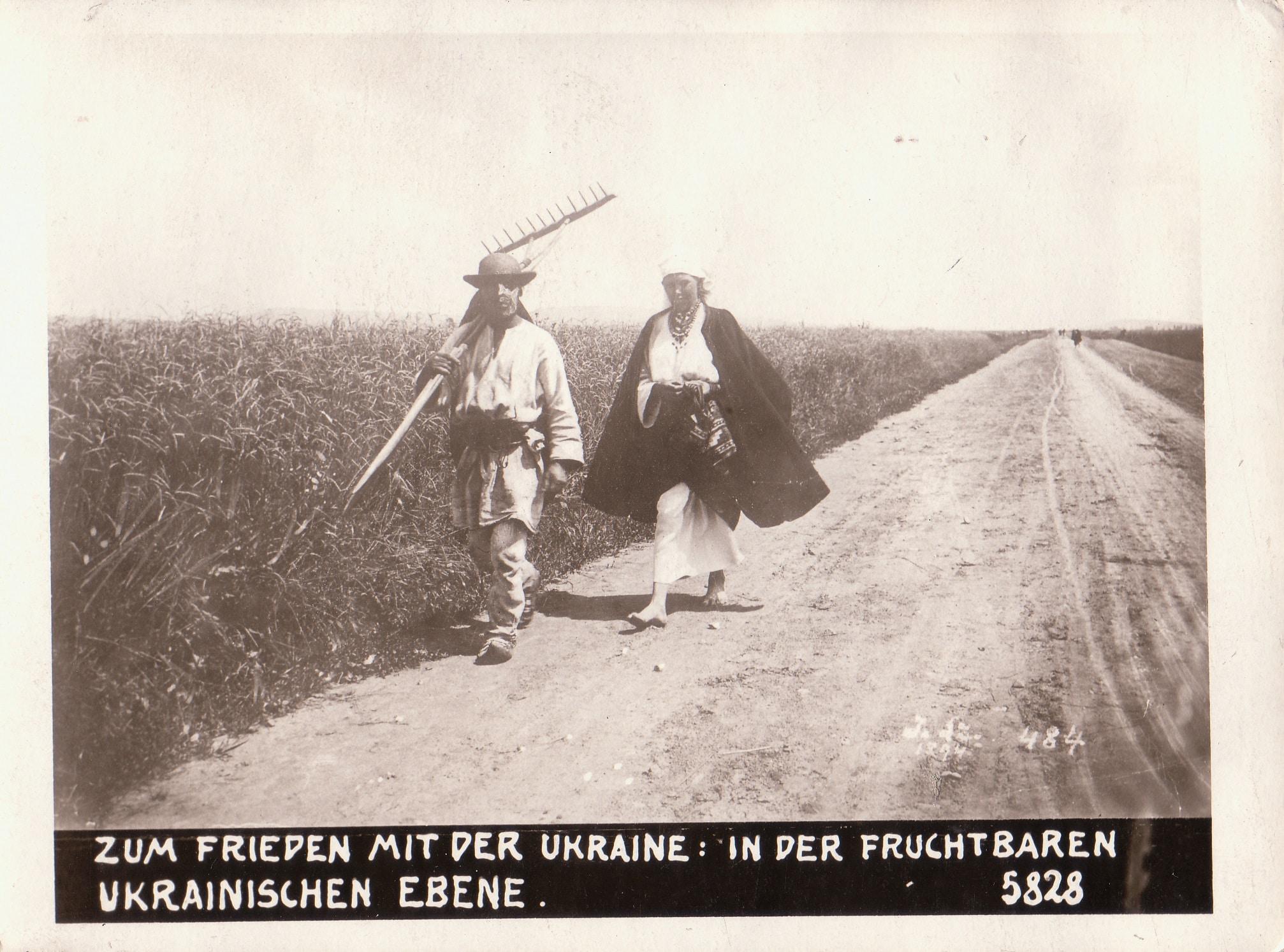 """Die historische Fotografie zeigt einen breiten Feldweg mit Ackerflächen links und rechts. Im Vordergrund gehen zwei Personen – eine Frau und ein Mann, der ein landwirtschaftliches Gerät trägt. Unter der Fotografie sind auf einem schwarzen Balken in weißen Großbuchstaben die Bildunterschrift """"Zum Frieden mit der Ukraine: in der Fruchtbaren Ukrainischen Ebene."""" und die Nummer 5828 angefügt. Das Foto selbst ist ebenfalls mit einem weißen Stift mit 484 nummeriert."""
