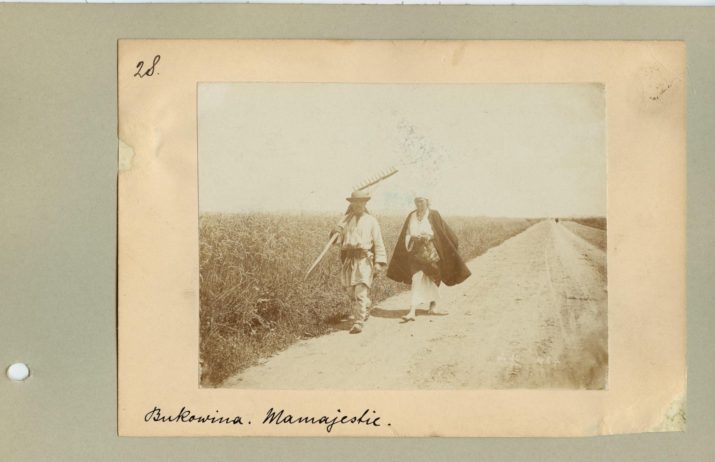 """Die Abbildung zeigt einen historischen Abzug derselben Fotografie wie der obigen. Die Farbgebung ist in diesem Fall verblasster. Das Foto ist auf Archivkarton angebracht und mit einem handschriftlichen Vermerk als """"Bukowina. Mamajestie"""" und der Nummer 28 beschriftet."""