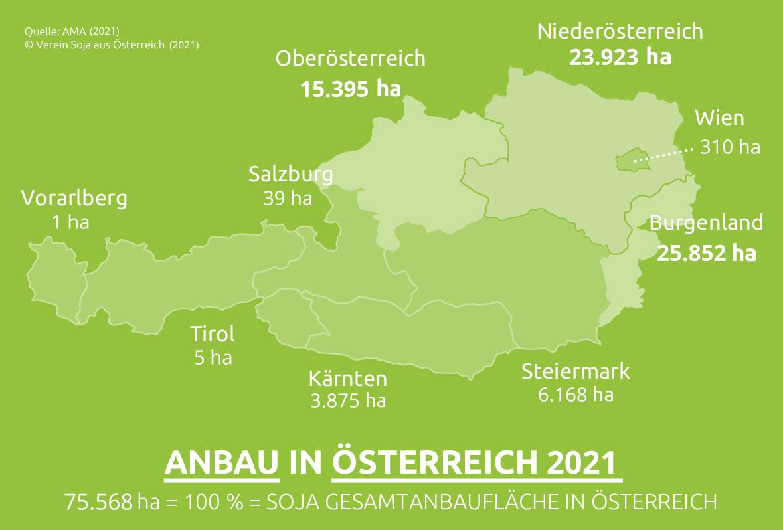 Die Grafik zeigt eine Österreichkarte mit dem Anteil der Soja-Produktion in den einzelnen Bundesländern. Insgesamt beträgt die Anbaufläche in Österreich 75.568 Hektar. Die größten Soja-Anbaugebiete sind Niederösterreich (23.923 Hektar) und das Burgenland (25.852 Hektar). Es folgen Oberösterreich (15.395 Hektar), die Steiermark (6.168 Hektar), Kärnten (3.875 Hektar), Wien (310 Hektar), Salzburg (39 Hektar), Tirol (5 Hektar) und Vorarlberg (1 Hektar).